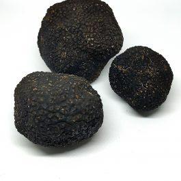 Trufas frescas de tamaño inferior a 20 gr.