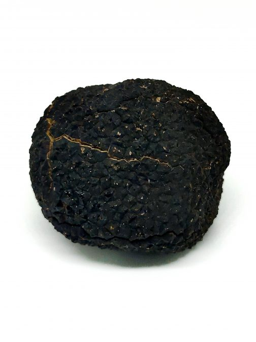 trufass-premium-tuber-malanosporum-fresca+20gr